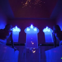 NEXUS NATURIST CLUB